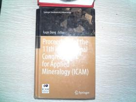Proceedings of the 11th international Congress for Applied Mineralogy(ICAM)