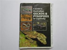 A Guide to...Australian GECKOS&PYGOPODS in captivity(澳大利亚壁虎和被盖足动物指南)小16开 注:该书为印刷后未裁书边
