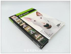 斗牛梗 Bull Terrier