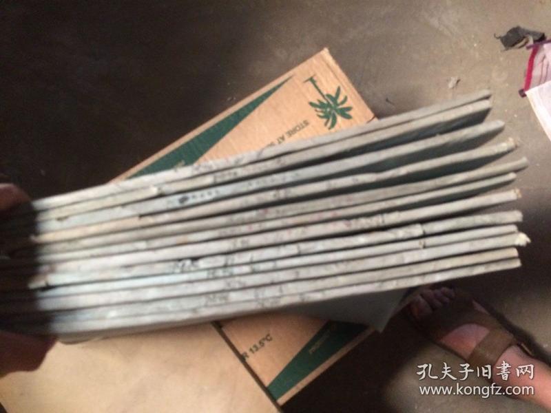 沈阳日报1981年合订本全年1-12