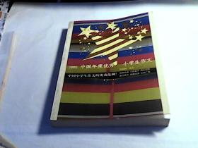 2005中国年度优秀小学生作文——2005中国年度作品系列