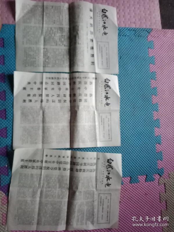 【白龙江水电小报】1976年<3张>
