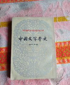 中国文字学史(下册)