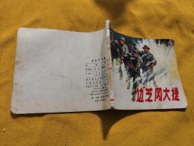 边芝冈大捷