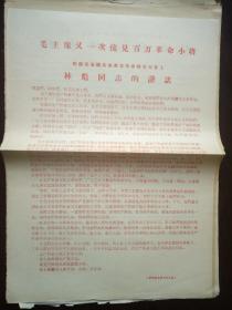 【文革精品大字报布告通告】套红 毛主席又一次接见百万革命小将 林彪同志的讲话   大8开  见图