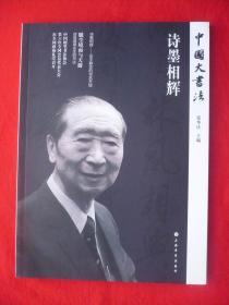 中国大书法[诗墨相辉]