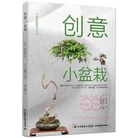 正版图书 创意小盆栽 /中国轻工业/9787518411764