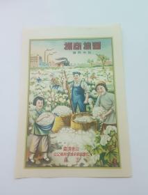 50年代彩色印制丰棉商标