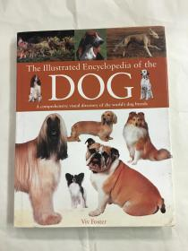 The Illustrated Encyclopedia of the DOG 狗犬品种百科全书