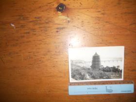 老照片:五六十年代杭州六和塔