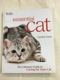 Essential Cat 英文原版