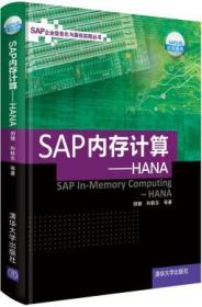 SAP内存计算:HANA