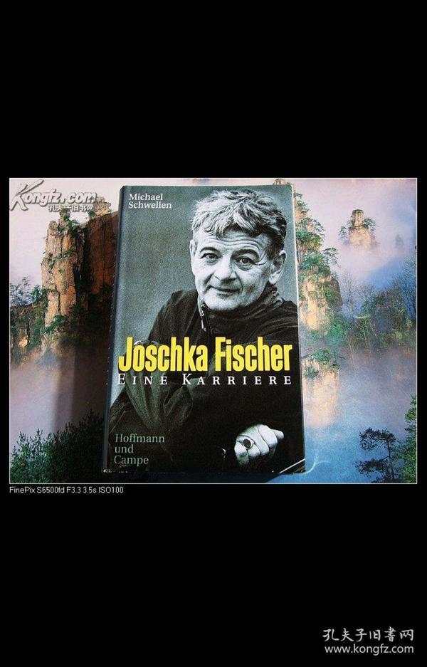 Joschka Fischer Eine Karriere