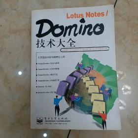 Lotus Notes/Domino技术大全