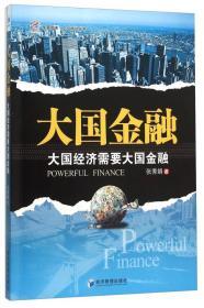 大国金融 大国经济需要大国金融