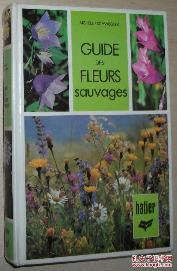 法文原版书 GUIDE DES FLEURS SAUVAGES Relié – de Dietmar Michele 彩色照片 法国西欧 实用野花指南