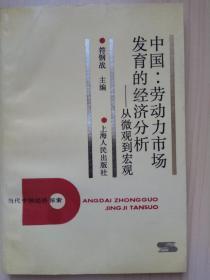 中国:劳动力市场发育的经济分析:从微观到宏观