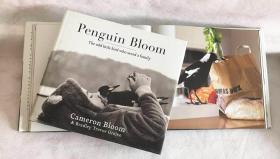 Penguin Bloom: The Odd Little Bird Who Saved a Family