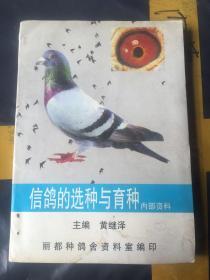 信鸽的选种 与育种