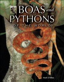 Boas and Pythons of the World 世界蟒蛇