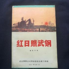《红日照武钢~报告文学》  1971年   (品好,无涂划)   [柜9-2-1]