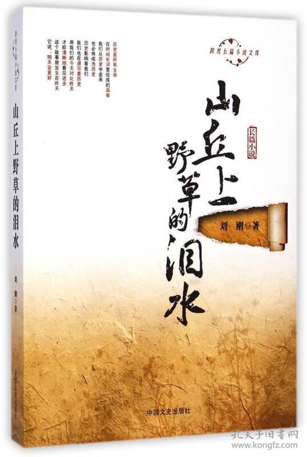 跨度长篇小说文库:山丘上野草的泪水
