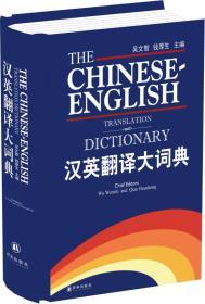 汉英翻译大词典