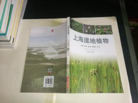 上海湿地植物