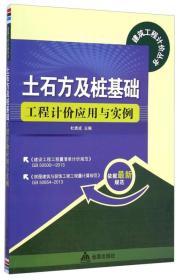 建筑工程计价丛书:土石方及桩基础工程计价应用与实例