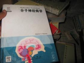 分子神经病学(导读版)