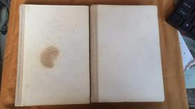 托尔斯泰文集 安娜・卡列尼娜 (全上 下册)精装本 1987年1版3印 书少封皮