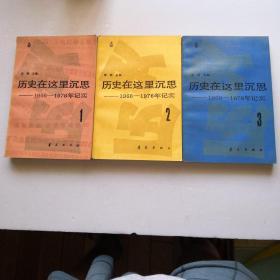 历史在这里沉思1966-1976年纪实(第1-3卷)