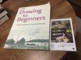 英文原版   Drawing for beginners - a step-by-step guide to successful drawing   为初学者绘画 - 成功绘画的分步指南 【存于溪木素年书店】