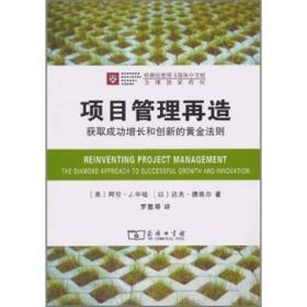 项目管理再造:获取成功增长和创新的黄金法则