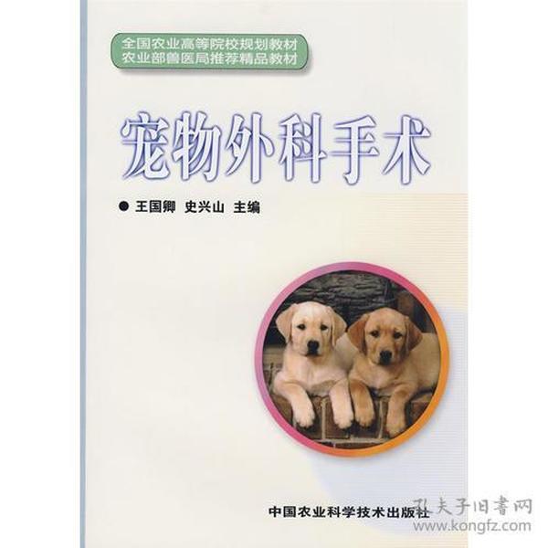 宠物外科手术