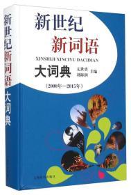 新世纪新词语大词典(2000年—2015年)