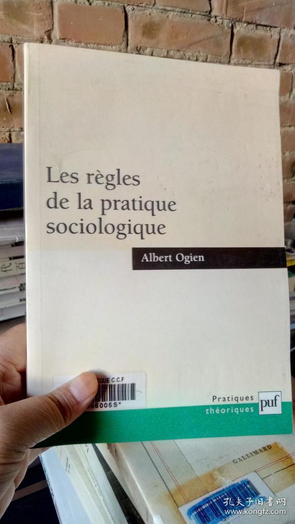 Les regles de la Pratique sociologique