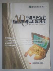 AO经济责任审计应用实例 9787511915801