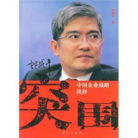 突围:中国企业战略抉择