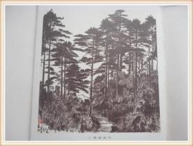 王鸿炭笔风景写生 12张图片
