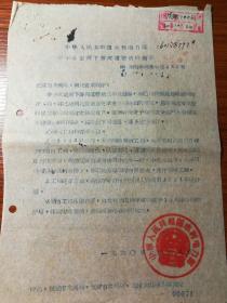 老文件16——中华人民共和国水利电力部关于永定河下游河道整治的指示 (60)水电科河冯字第021号