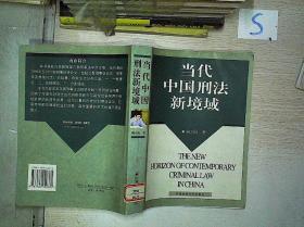 当代中国刑法新境域