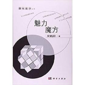 趣味数学丛书:魅力魔方