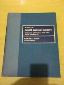ATLAS OF SMAII ANIMAI SURGERY THORACIC ABOOMINAL AND SOFT TISSUE TECHNIQUES(原版精装医学类)