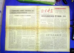 100010252  文革小报北京晚报1966.6.23