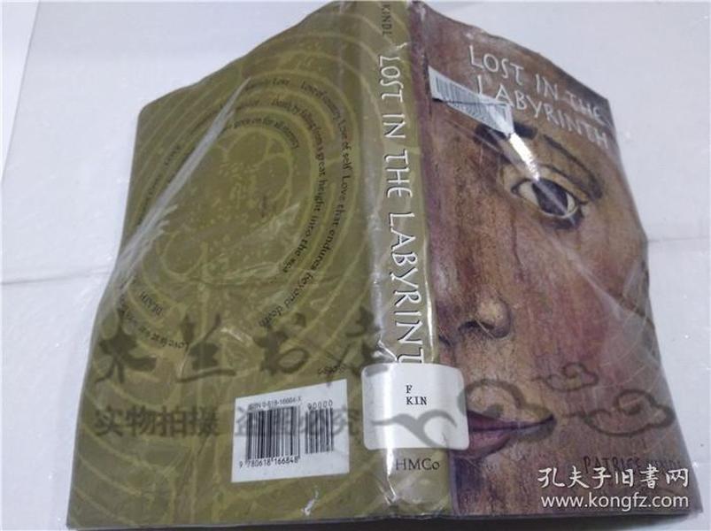 原版英法德意等外文书 LOST IN THE LABYRINTH PATRICK KINDL Houghton Mifflin Company 2002年 大32开硬精装