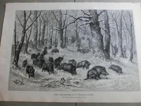 【现货 包邮】1879年木刻版画《野猪狩猎》(Schwarzwildjagd) 尺寸约40.8*27.5厘米(货号 101117)