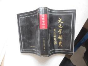 文化学辞典