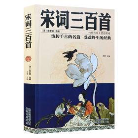 精编精选·精彩解读:宋词三百首