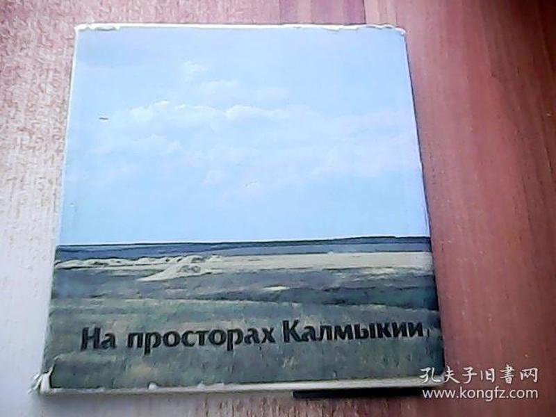На просторах Калмыкии